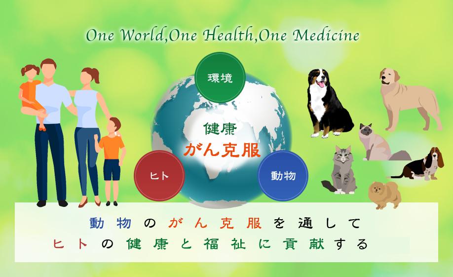 動物と人の共生 - ヤマザキ学園大学 比較腫瘍学研究室