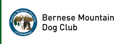 Bernese Mountain Dog Club